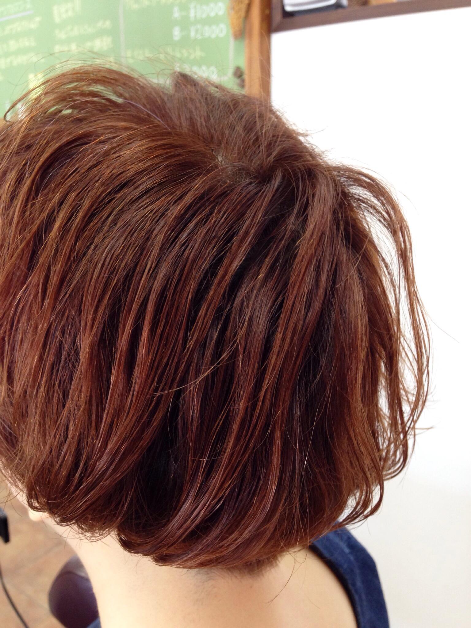 salon work 4  秋カラー