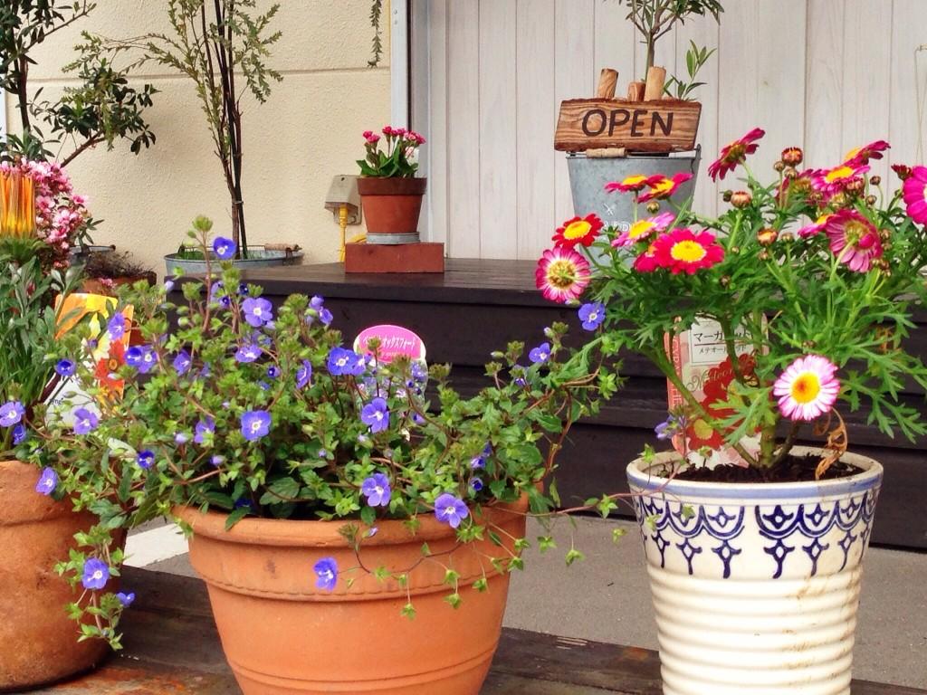 花を植えよう